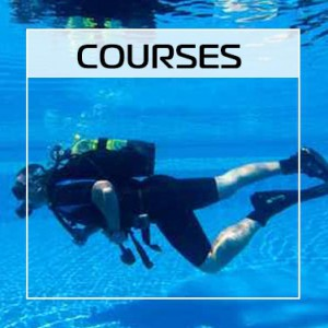 CTA-courses